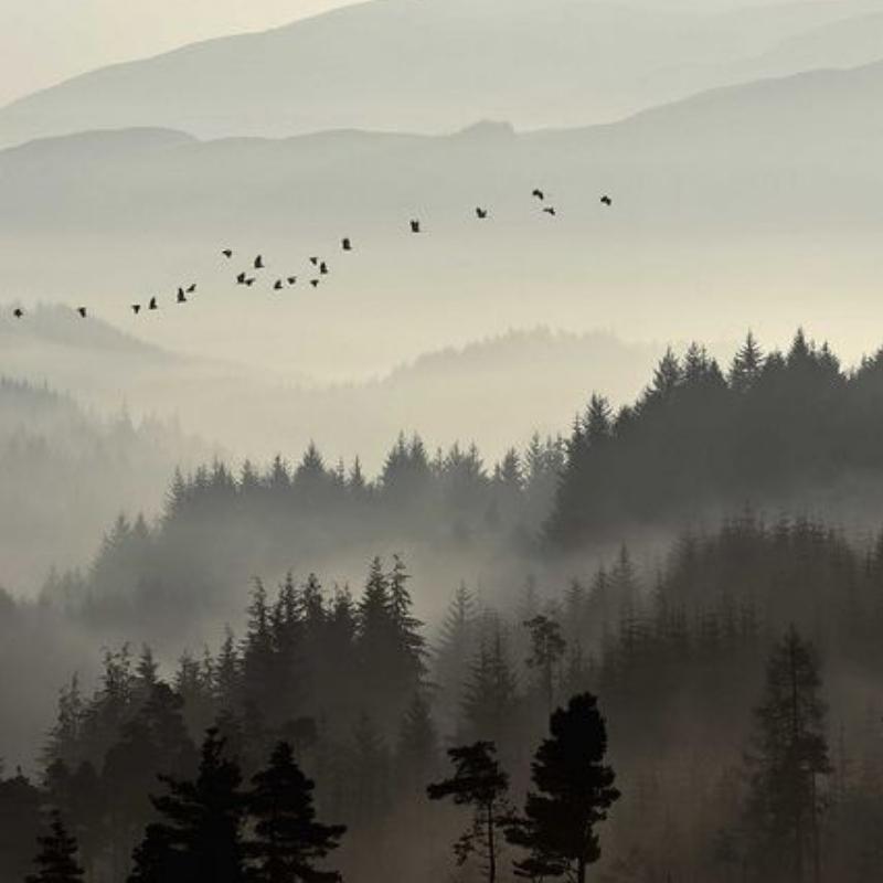 3. Take a nature lesson. -
