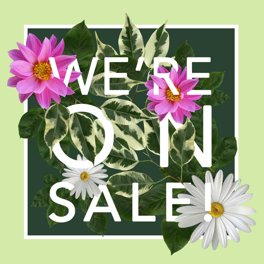 Sale Poster.jpg