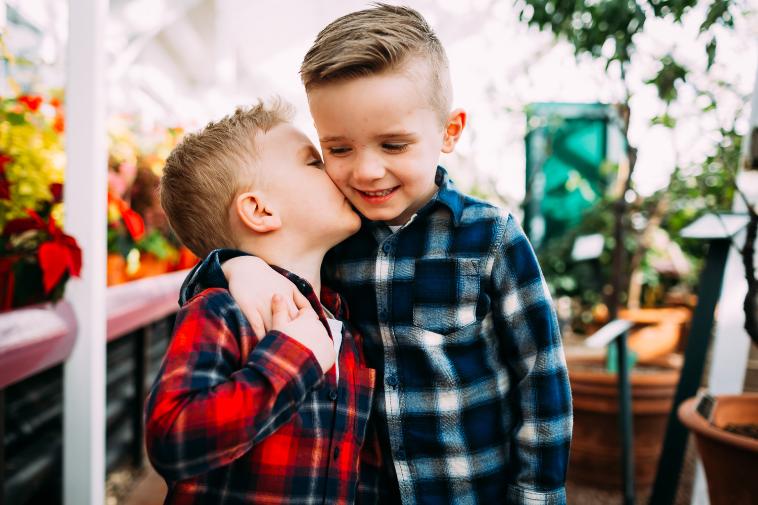 two brothers under 5s hugging and kissing each other in plaid shirts
