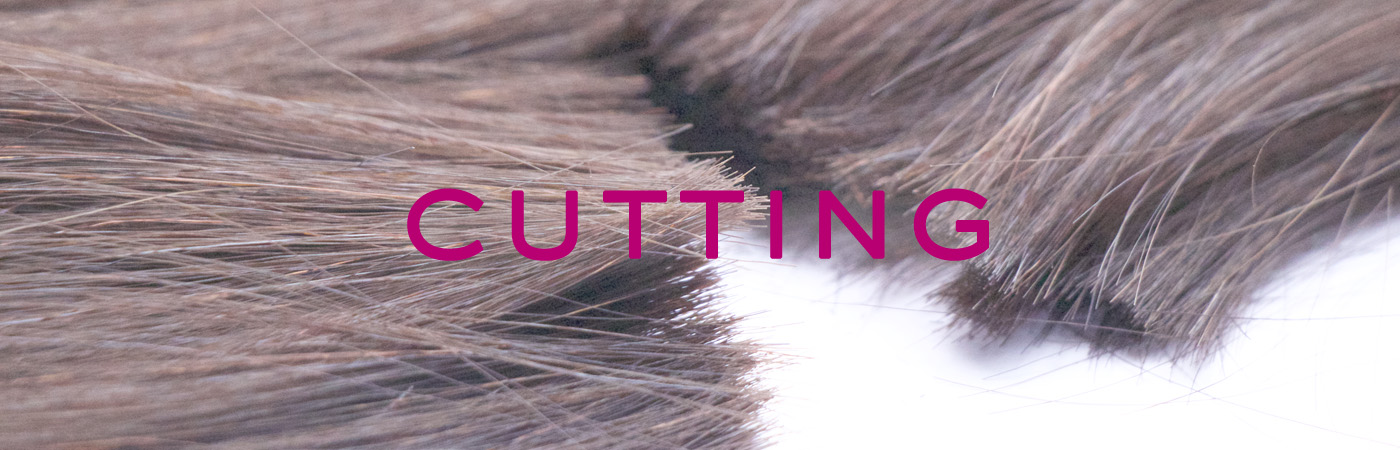 Hair4Menu 35845 17-10-372017-03-06.jpg
