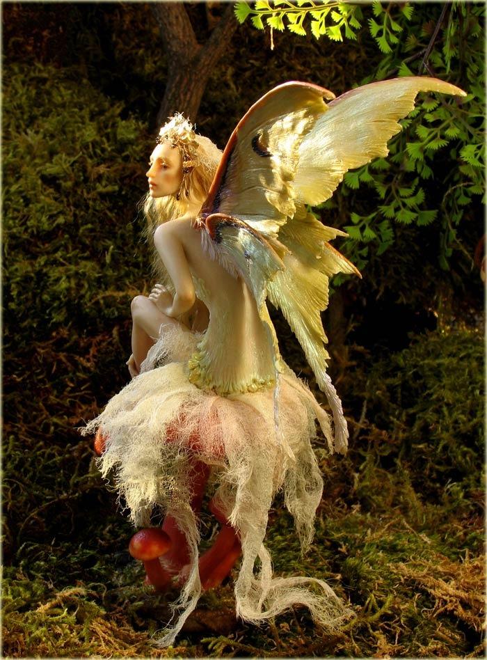 b_mushroom_fairy_700wb.jpg