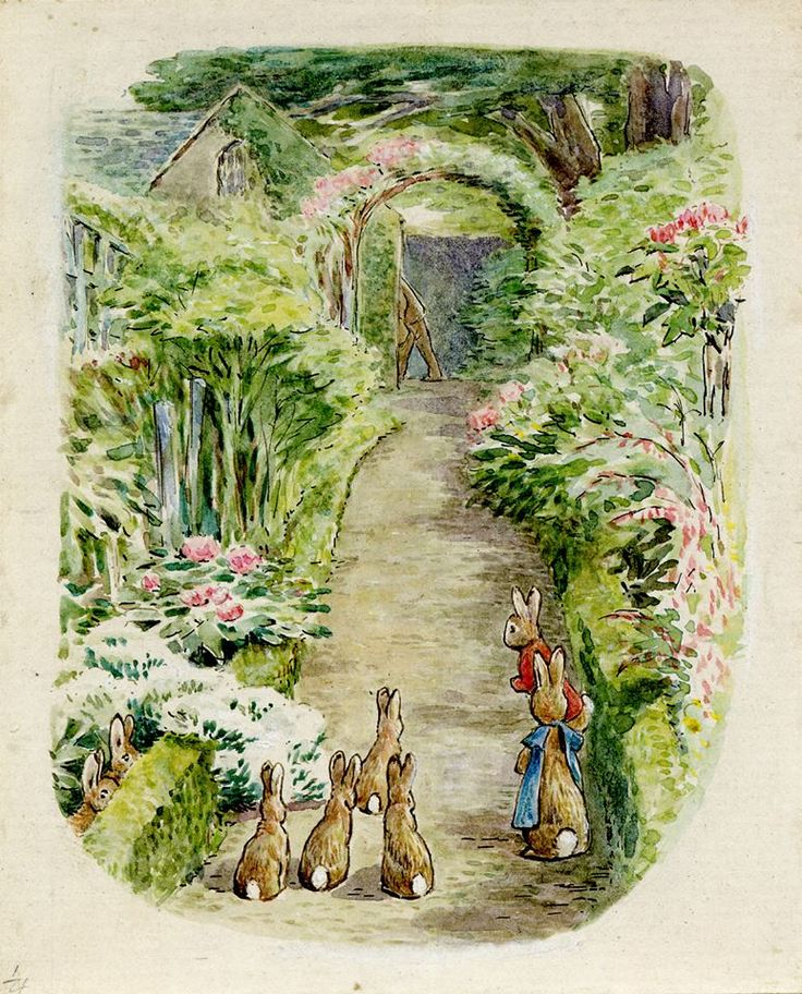 fe8eaac94603a0a68ca9fce3b60ada60--british-museum-peter-rabbit.jpg