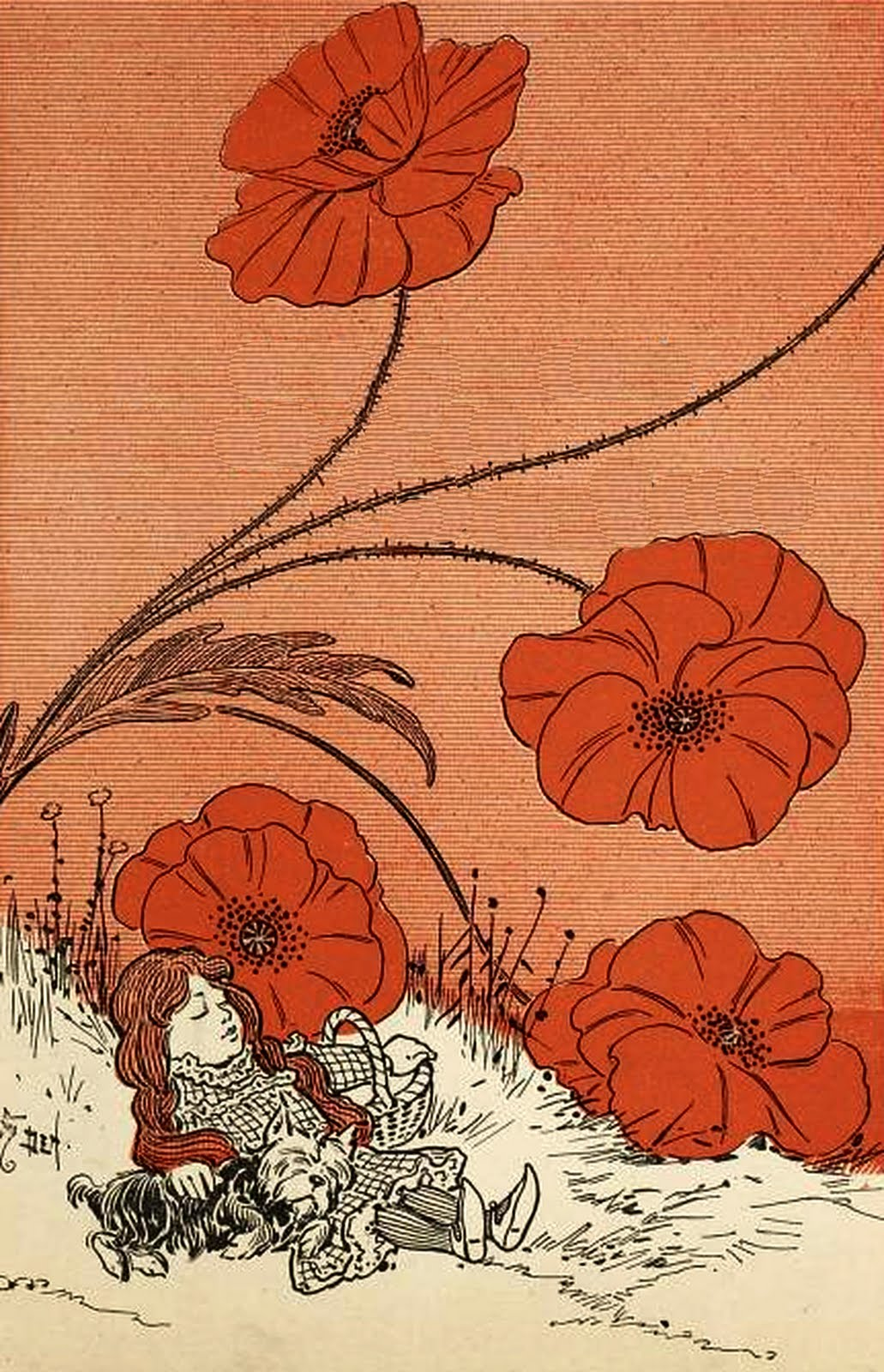 Deadly Poppies -The Wonderful Wizard of Oz -Illustrated by William Wallace