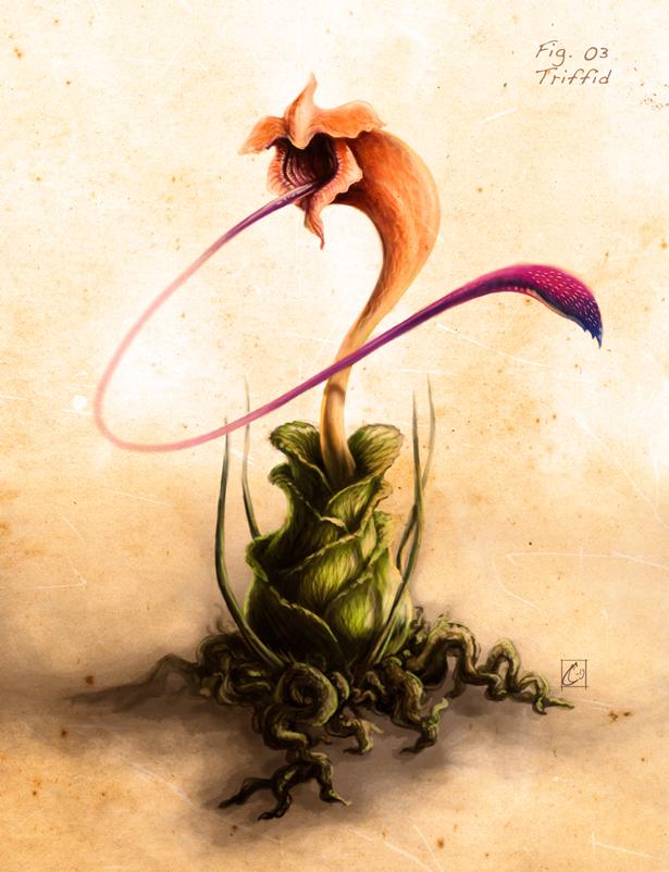 Triddid art by https://cthulhusaurus-rex.deviantart.com/