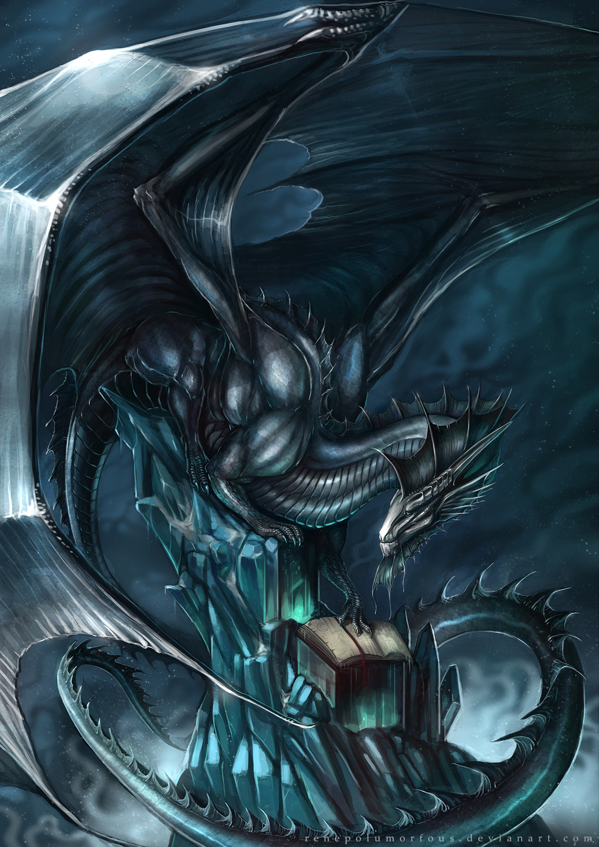 Commission Qualinothrinopis silver  dragon 72.jpg