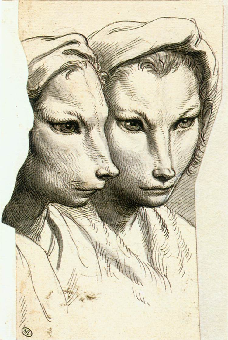 Charles Le Brun - Physiognomic Heads Inspired by a Weasel