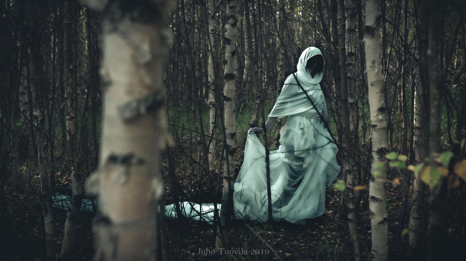 Photography    https://www.deviantart.com/tuovila
