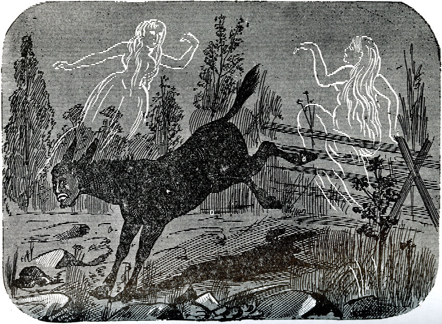 Dean Turned into a Mule, 1894, An Authenticated History of the Famous Bell Witch
