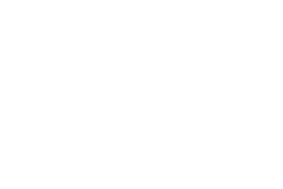 Transparent White Logo copy.PNG