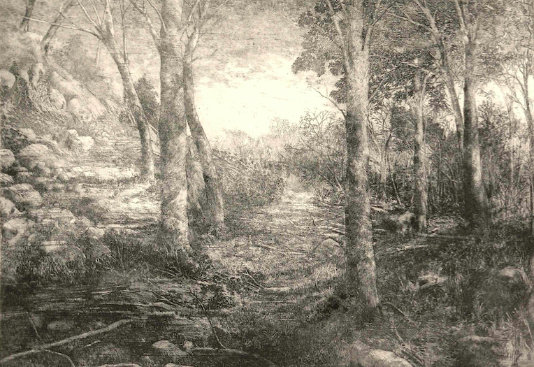 """""""Fall Landscape,"""" etching by Tom Edwards"""
