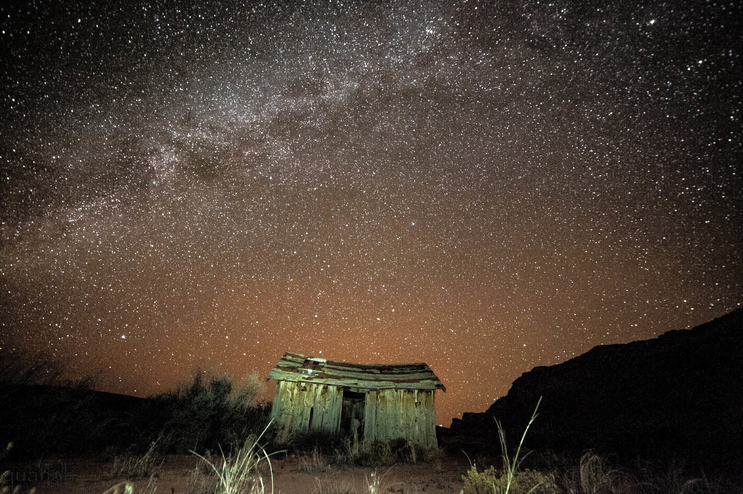 Country Life at Night