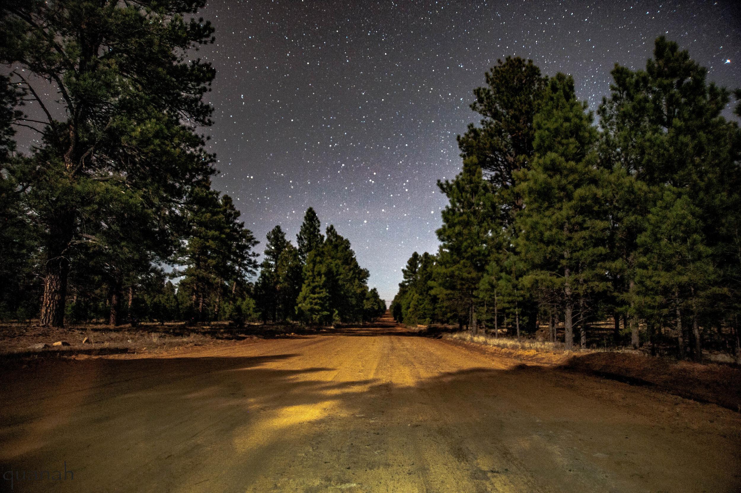 Sawmill Road of Good Times