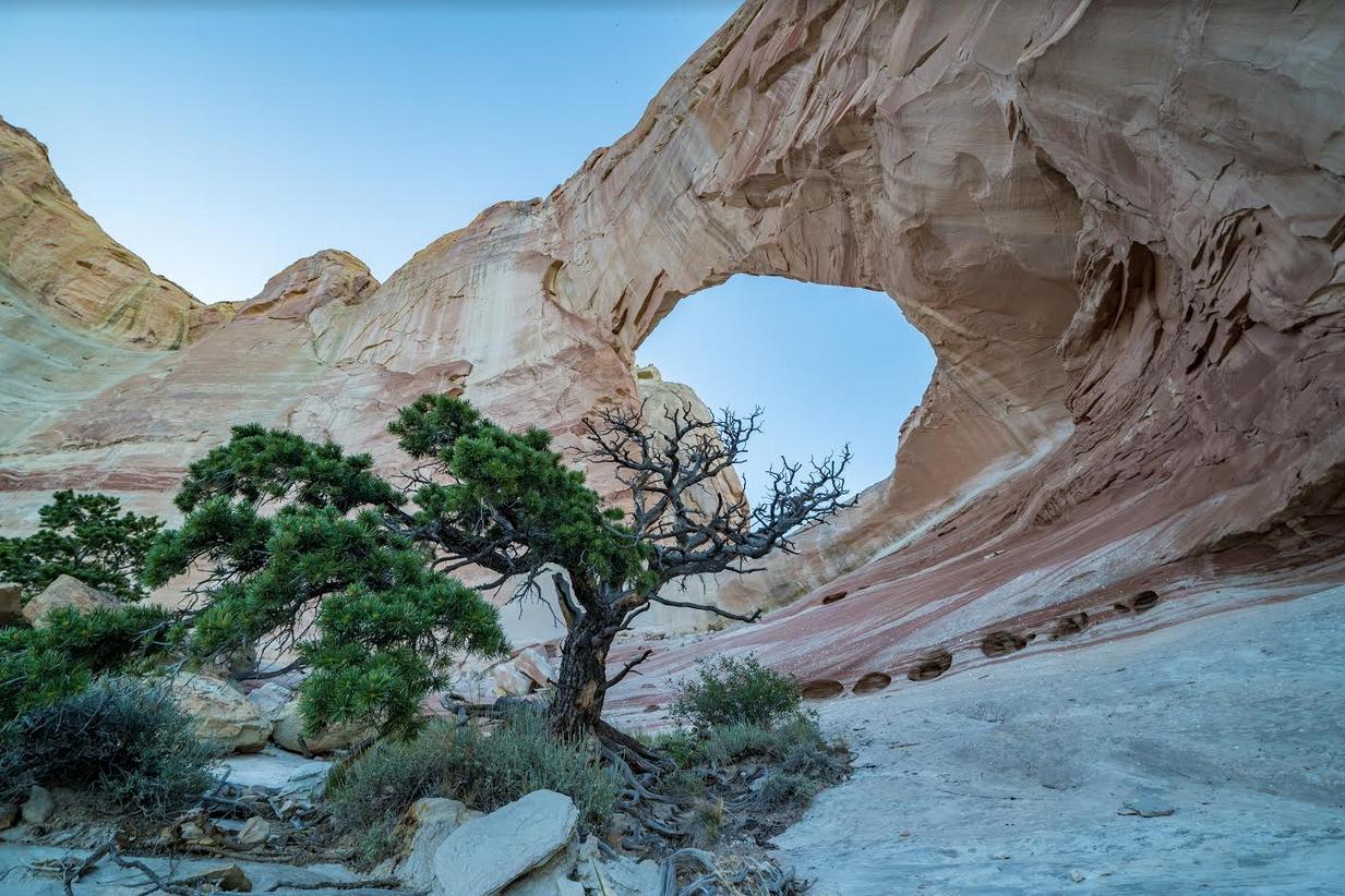 Under White Mesa Arch