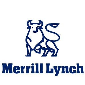 Merrill Lynch Michael Veltri Testimonial