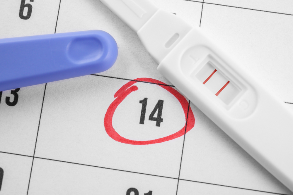 Pregnancy Test.jpg