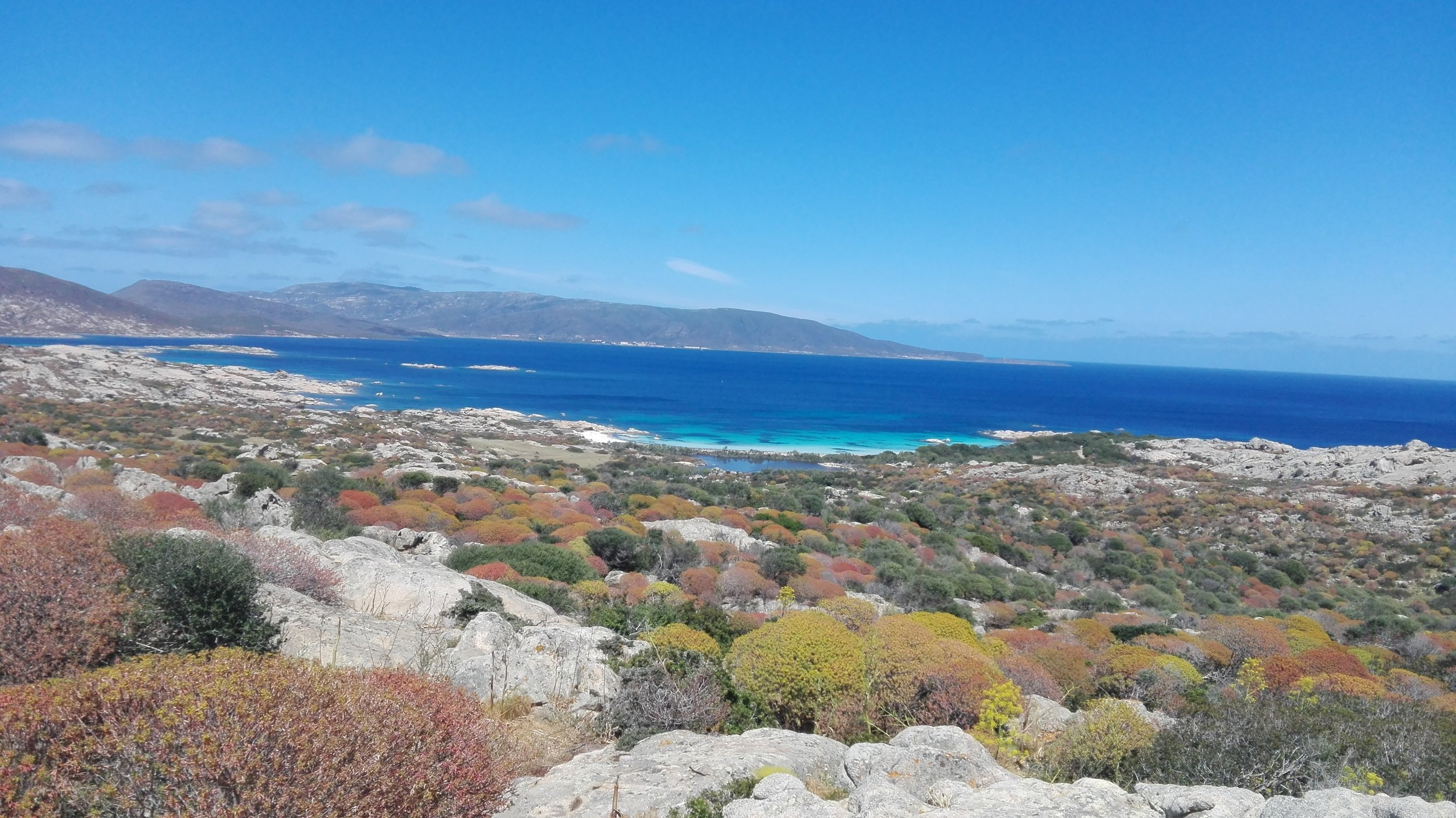 excursion asinara comfort tour.jpg