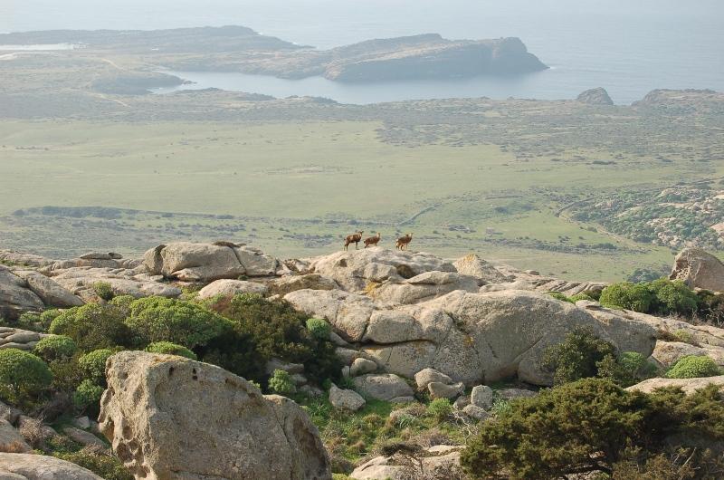 Sardinia Photo Nature