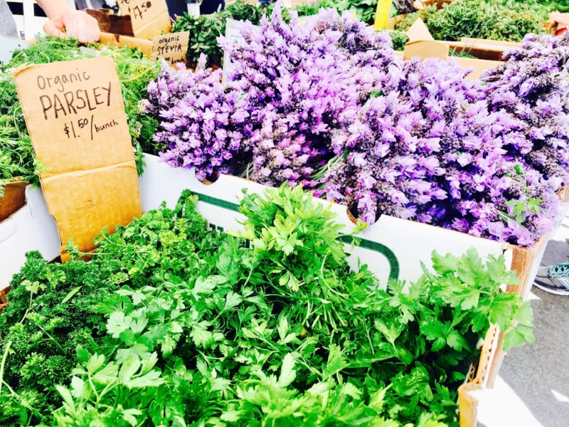 The colors were amazing at the Venice Farmers Market
