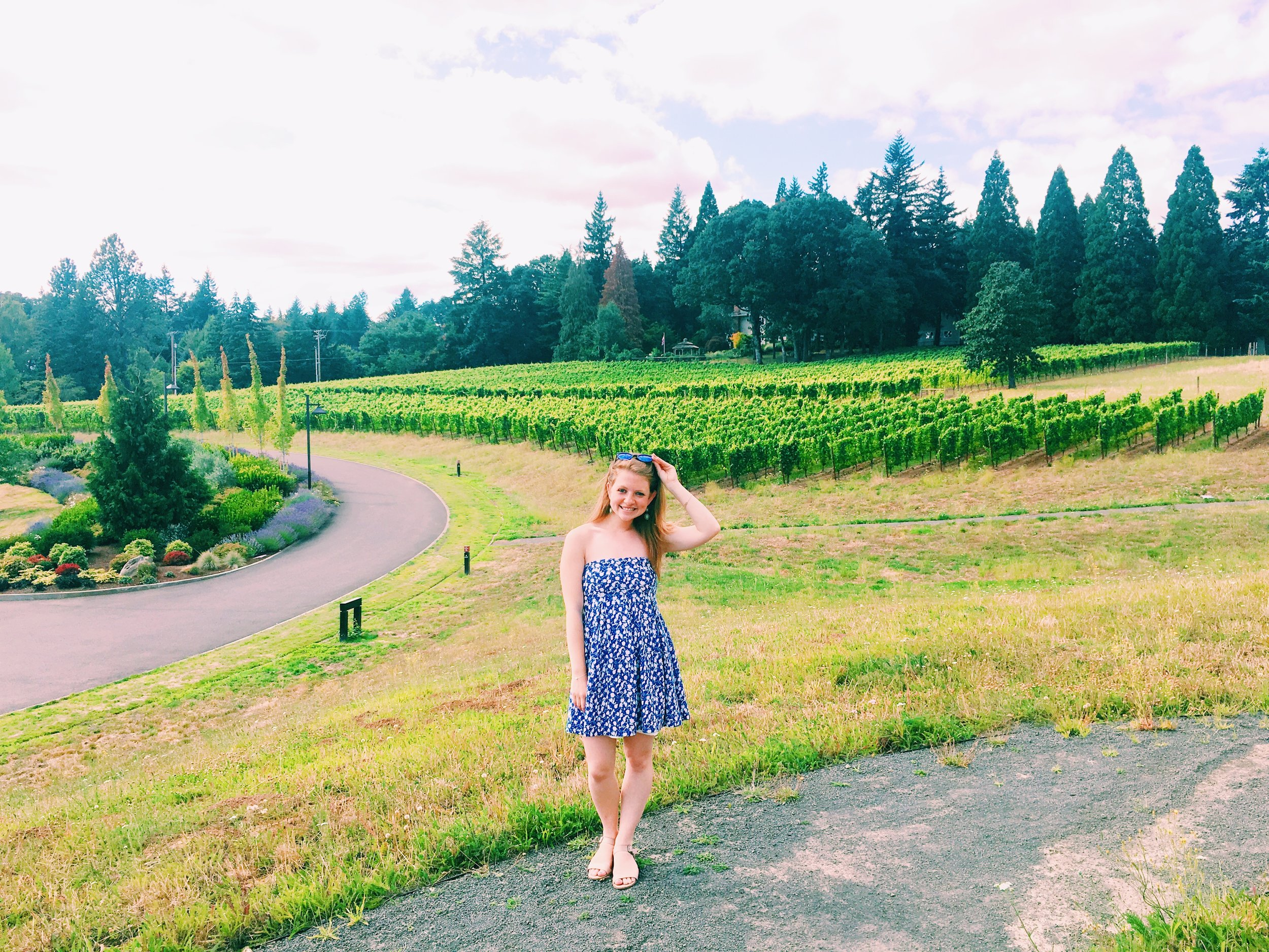 In Oregon, vineyards vineyards everywhere and not a drop to drink!
