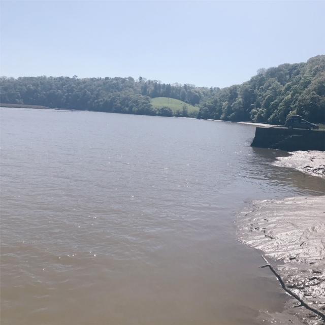 the river tamer - pentillie castle