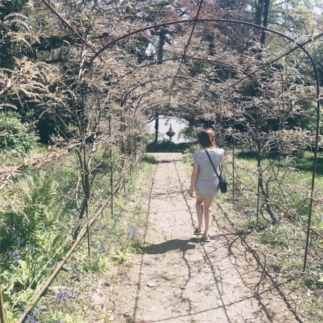pentille castle grounds - natalie millar-partridge