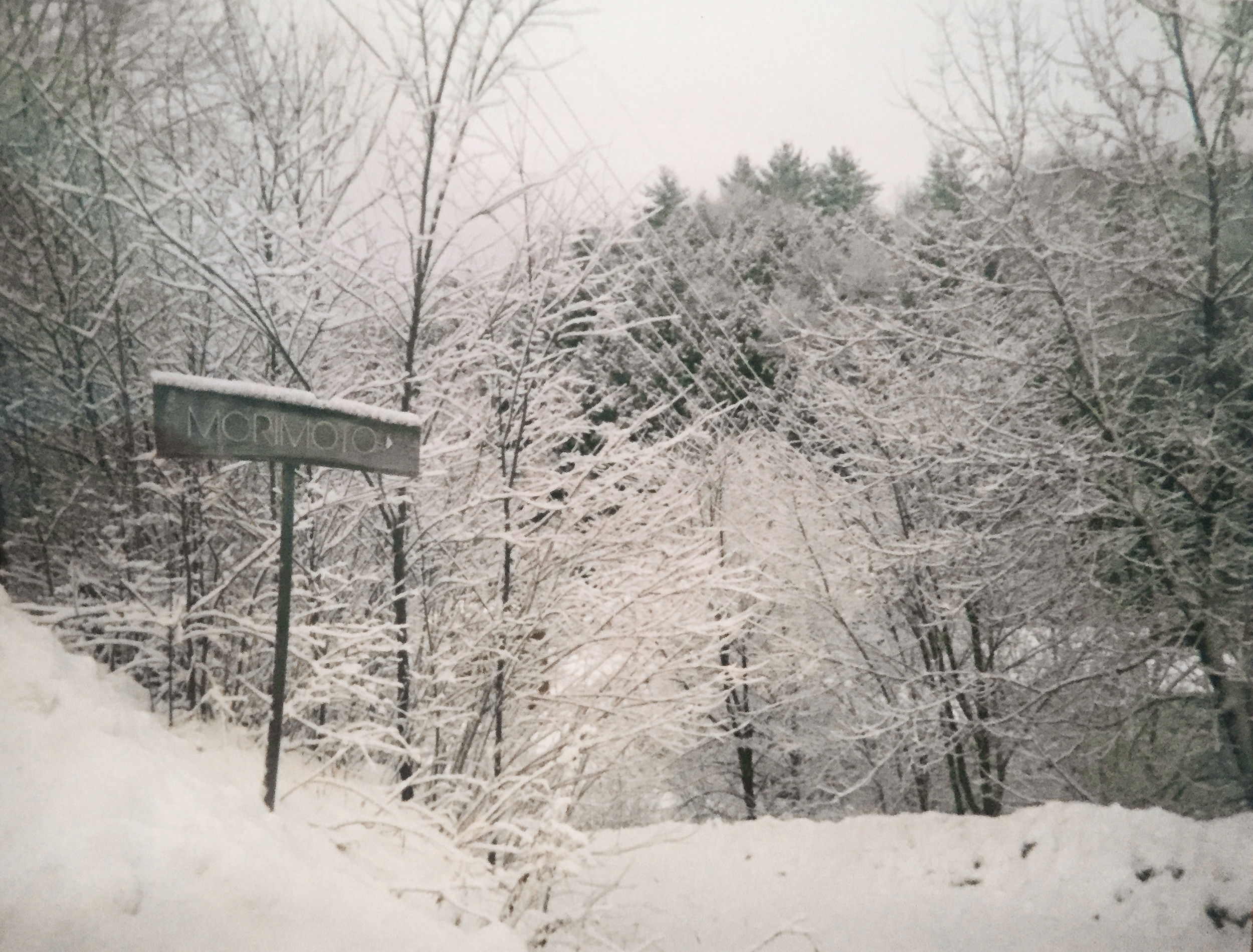 Morimoto sign in snow