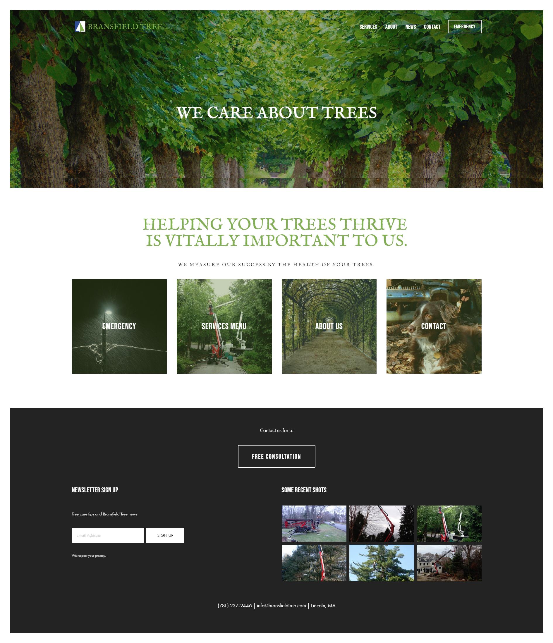 New Website - Squarespace