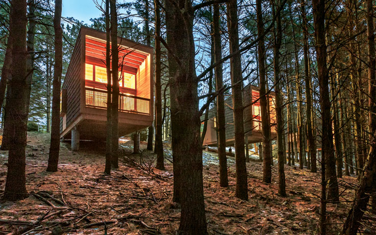 Side-by-side treehouse cabins blend seamlessly into the surrounding forest, providing guests with pure solace and quiet. /  Source