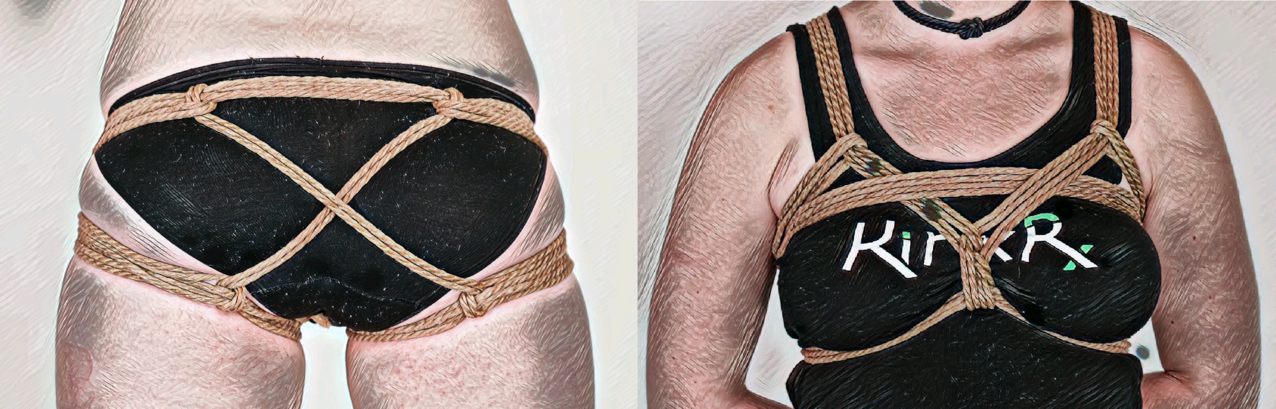 harnesses.png