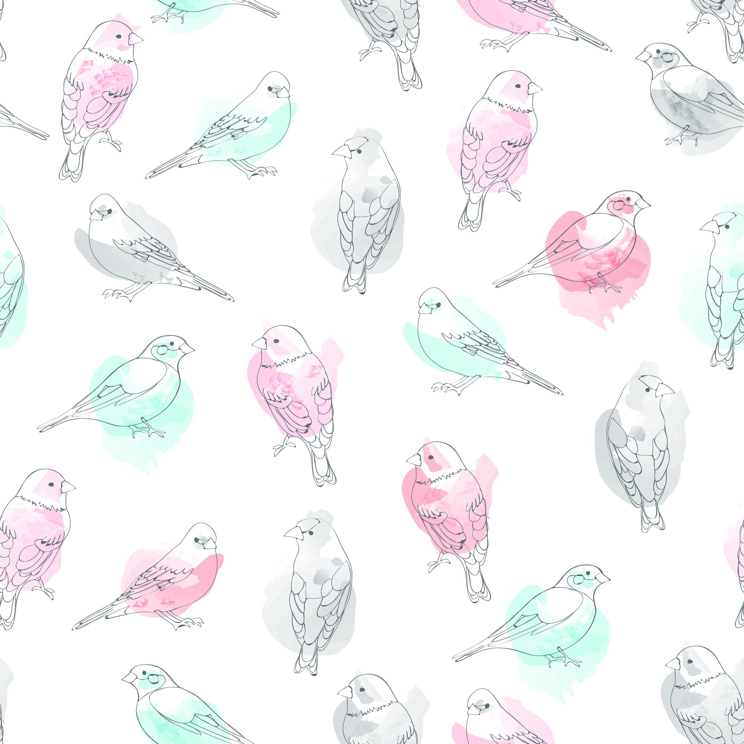 birds multi-01.jpg