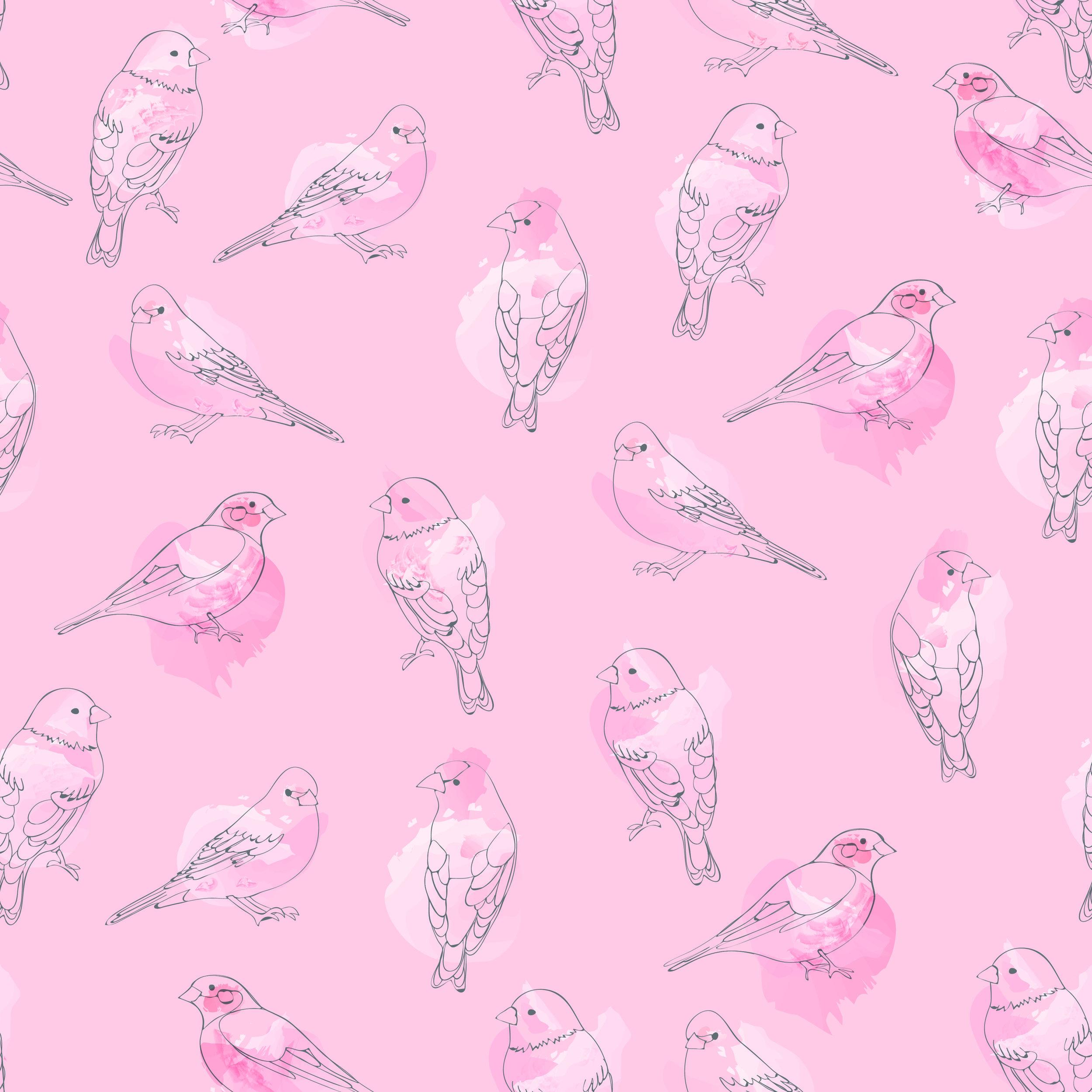 birds pink pink backround 2-01.jpg