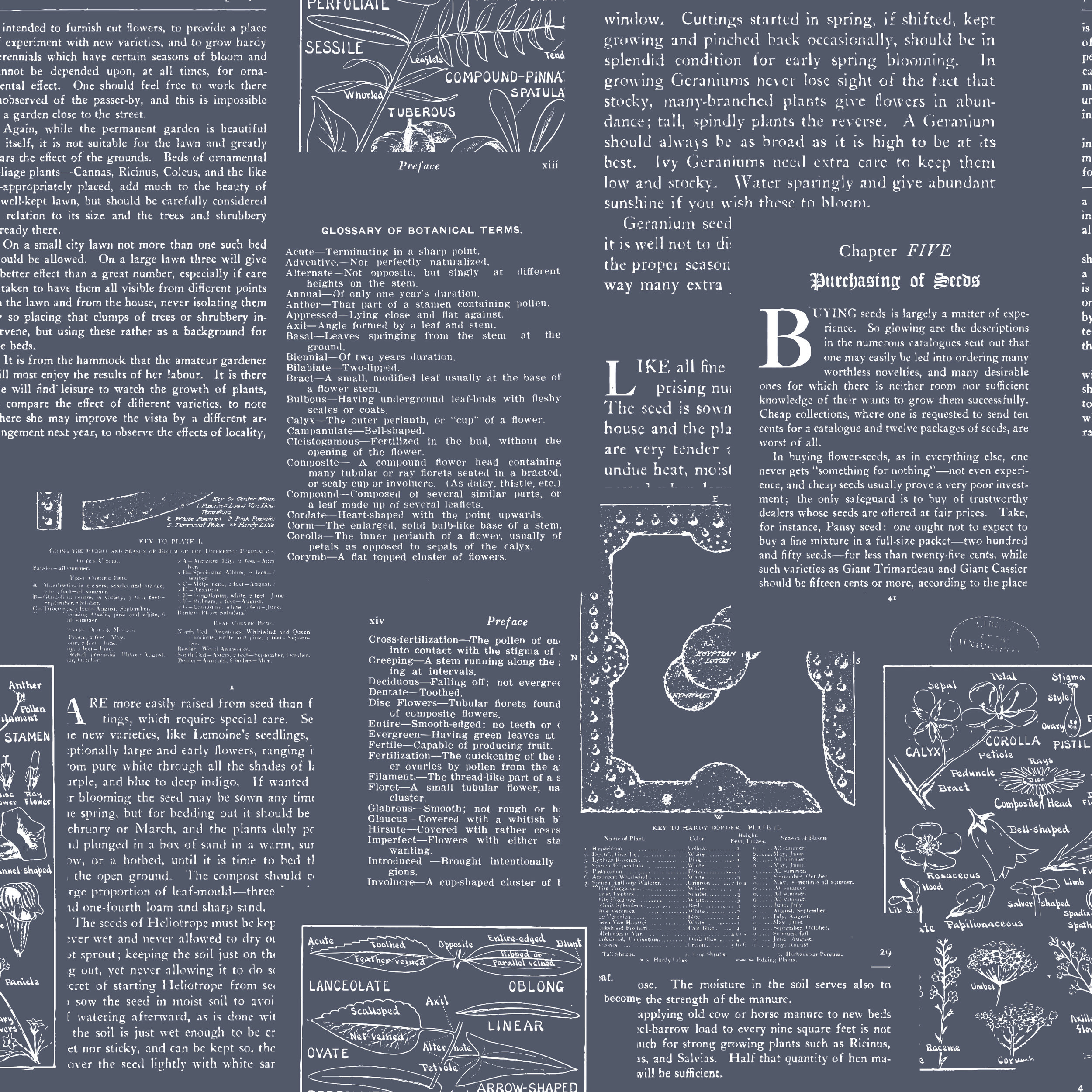 book pages dark grey with white-01.jpg