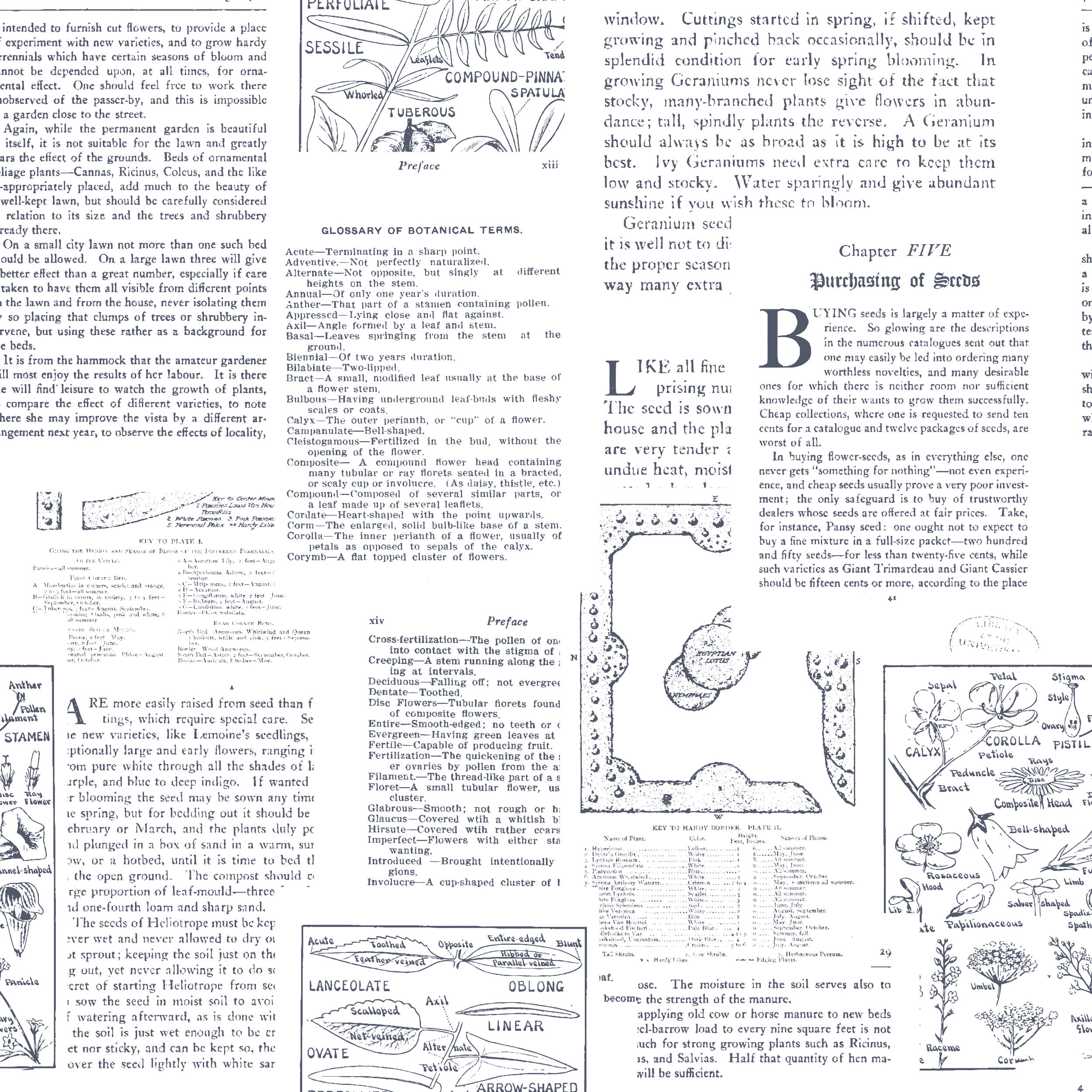 book pages-01-01.jpg