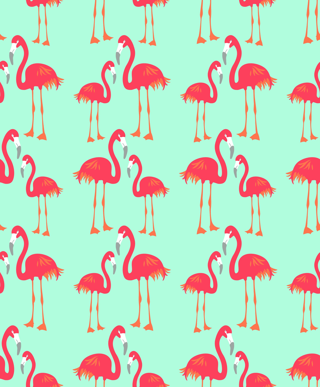 flamingo master-01.jpg