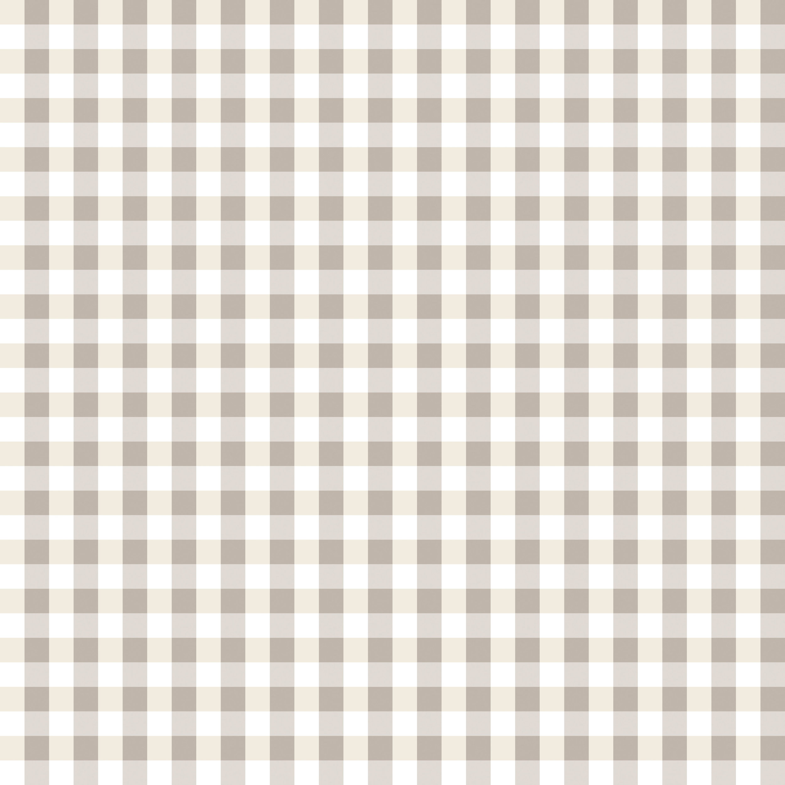 grey plaid small 300-01.jpg