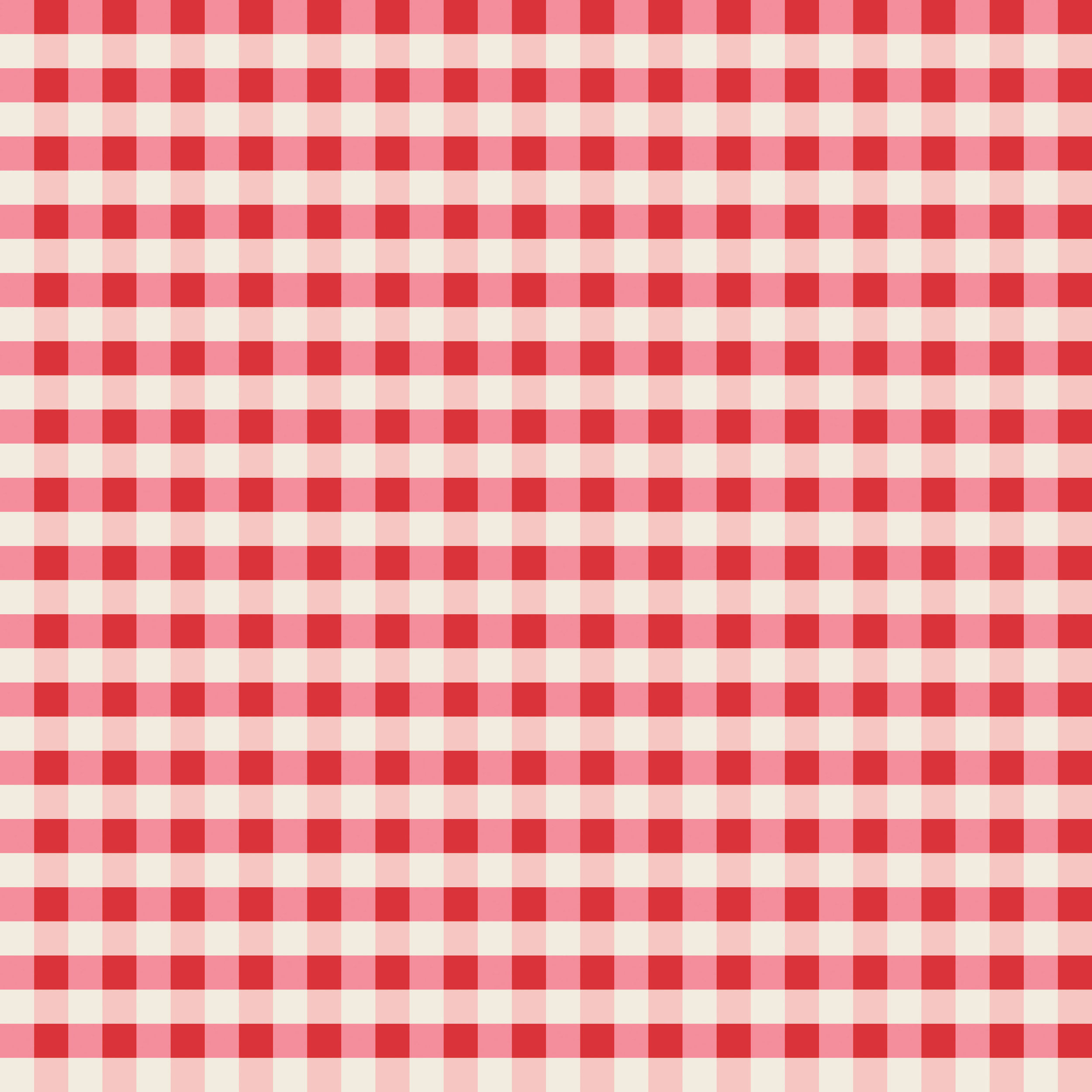 pink and red plaid 300-01.jpg