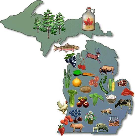 Michigan Mitten food.jpg