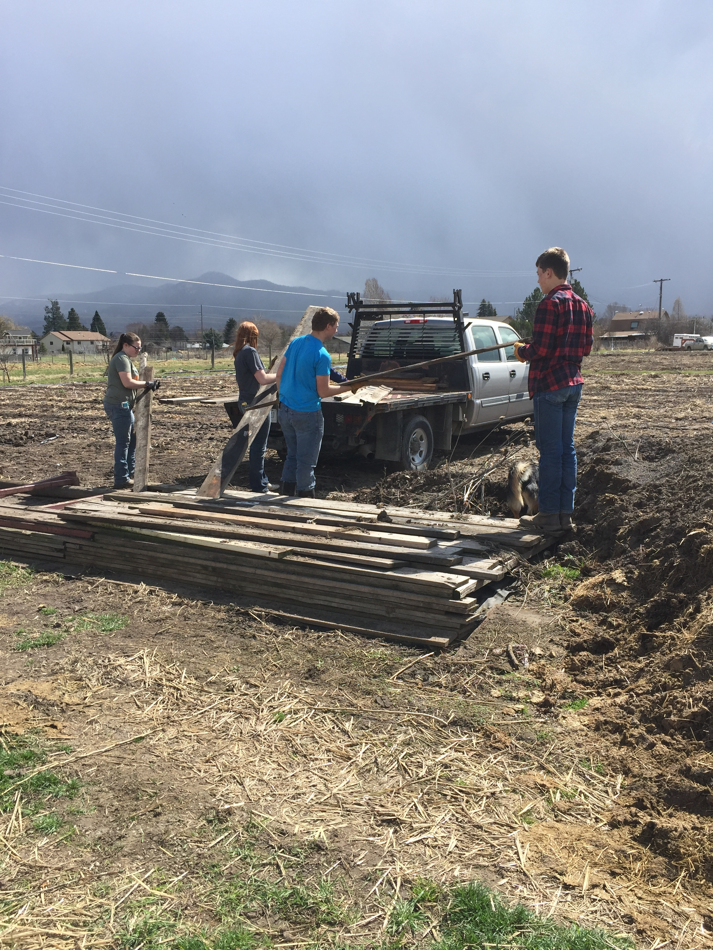 FFA Kids helping clear out the area of our new orchard!