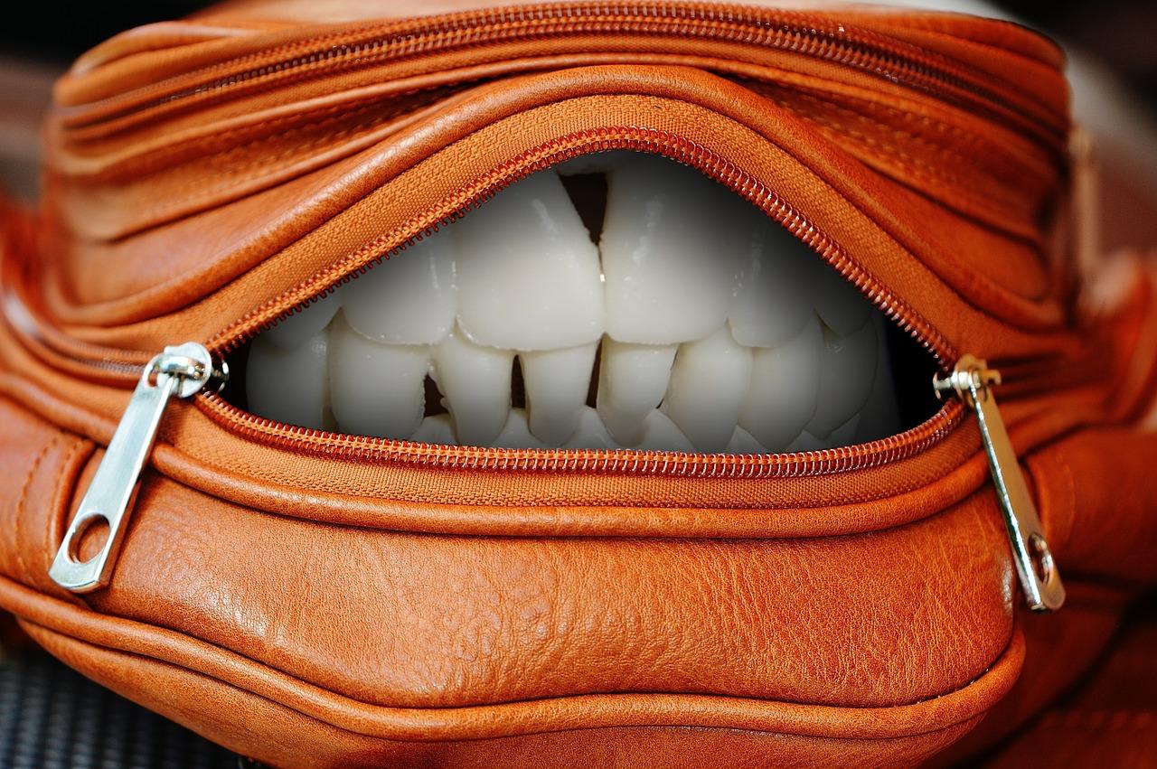 handbag-1558855_1280.jpg