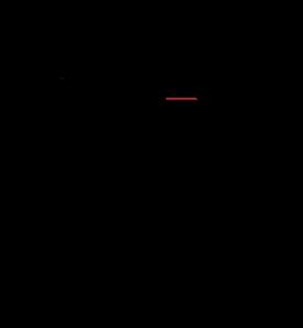 Bellus logo.png