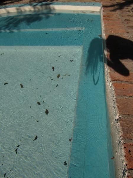 San Miguel_Shadow Selfie Pool.jpg