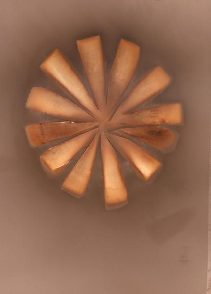 Sun Carrots.jpg