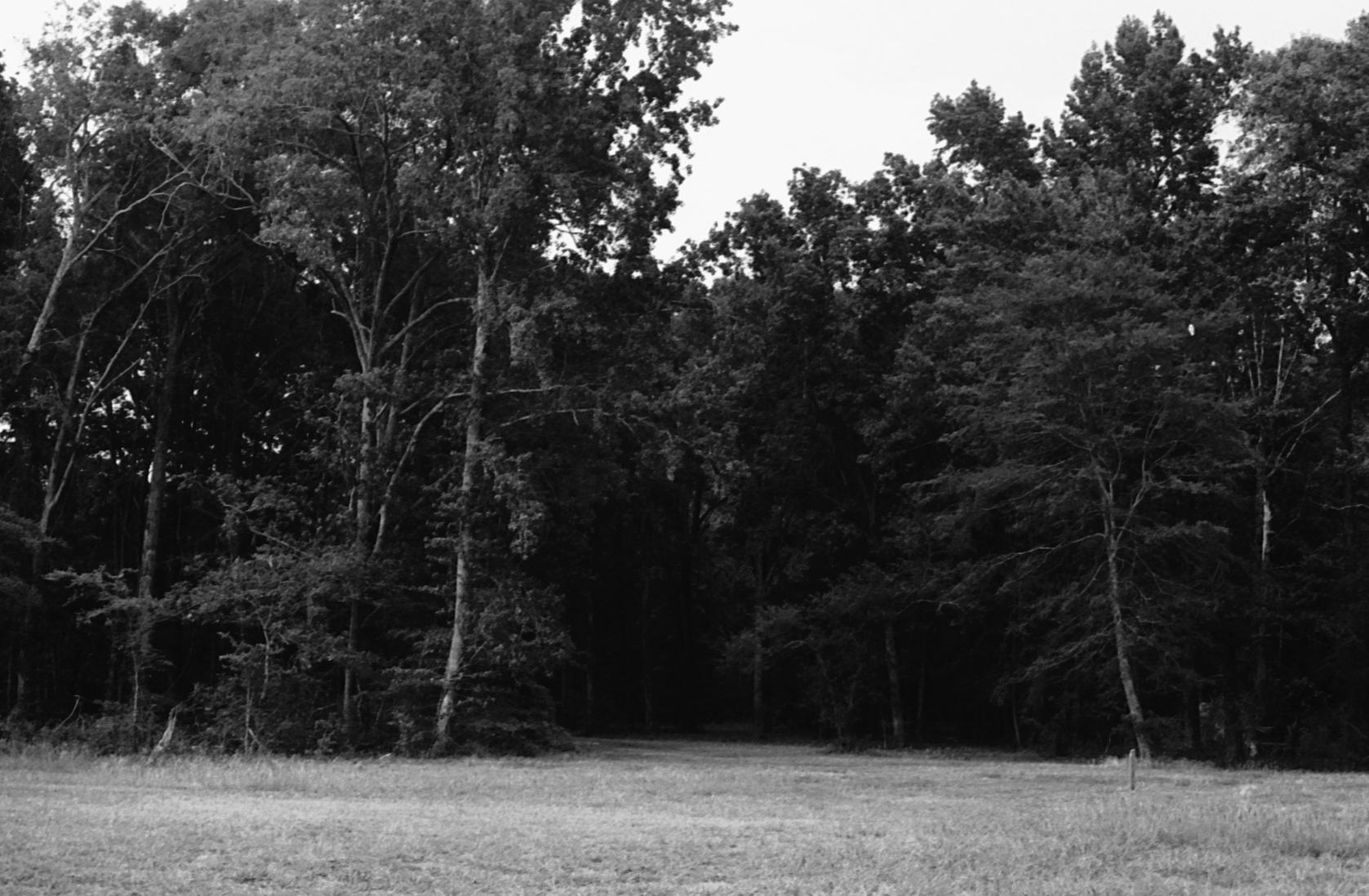Transylvania 08.jpg