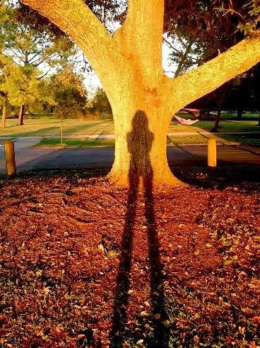 Sunset Selfie .jpg
