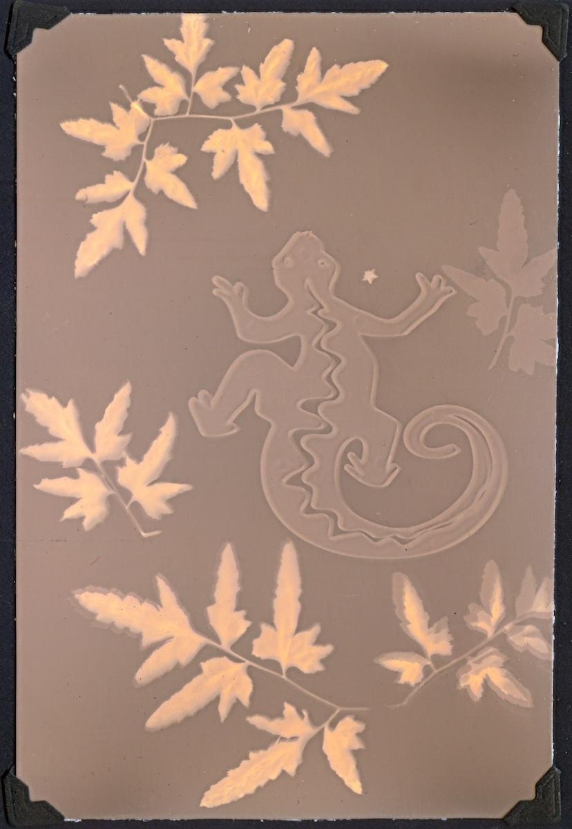 Letting Go Gallery_Lizard & Vines_Lumen Print_Natasha Sanchez.jpg