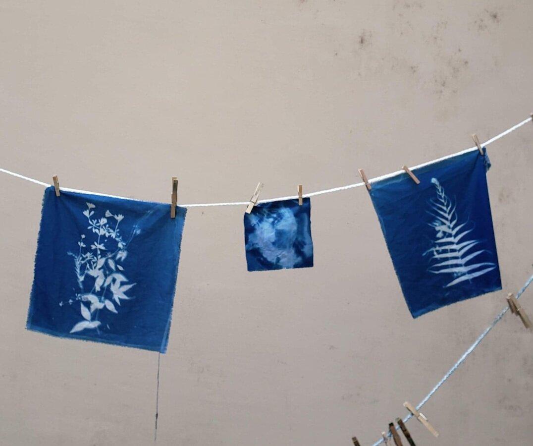 Ferns_Cyanotype Workshop_Jan2019.jpg