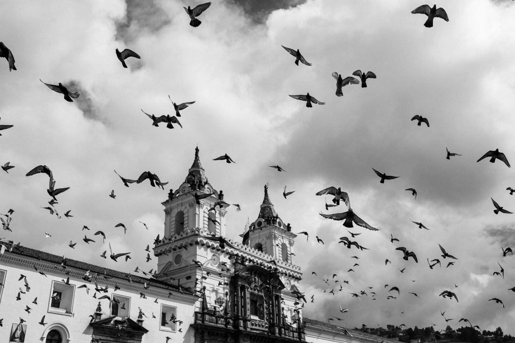 Quito, 2019