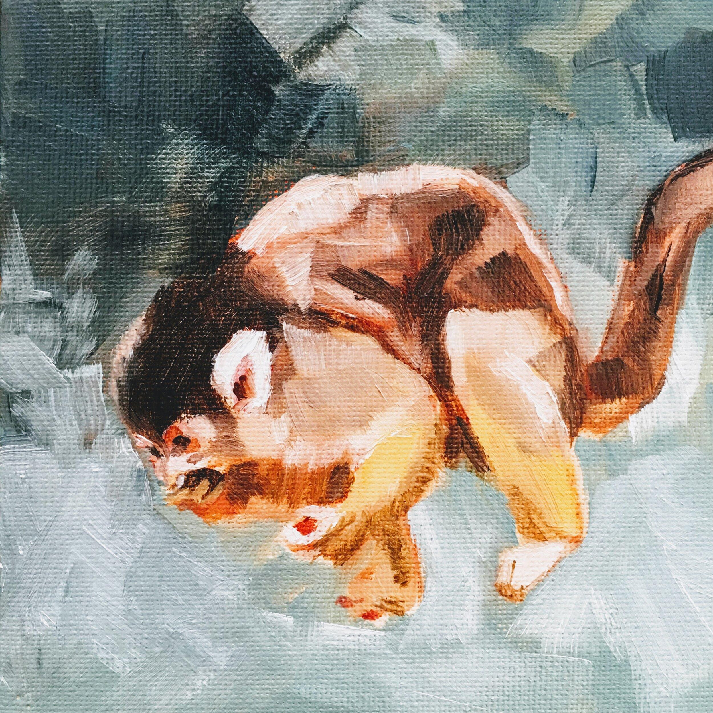 amberwhitworth_monkey.JPG