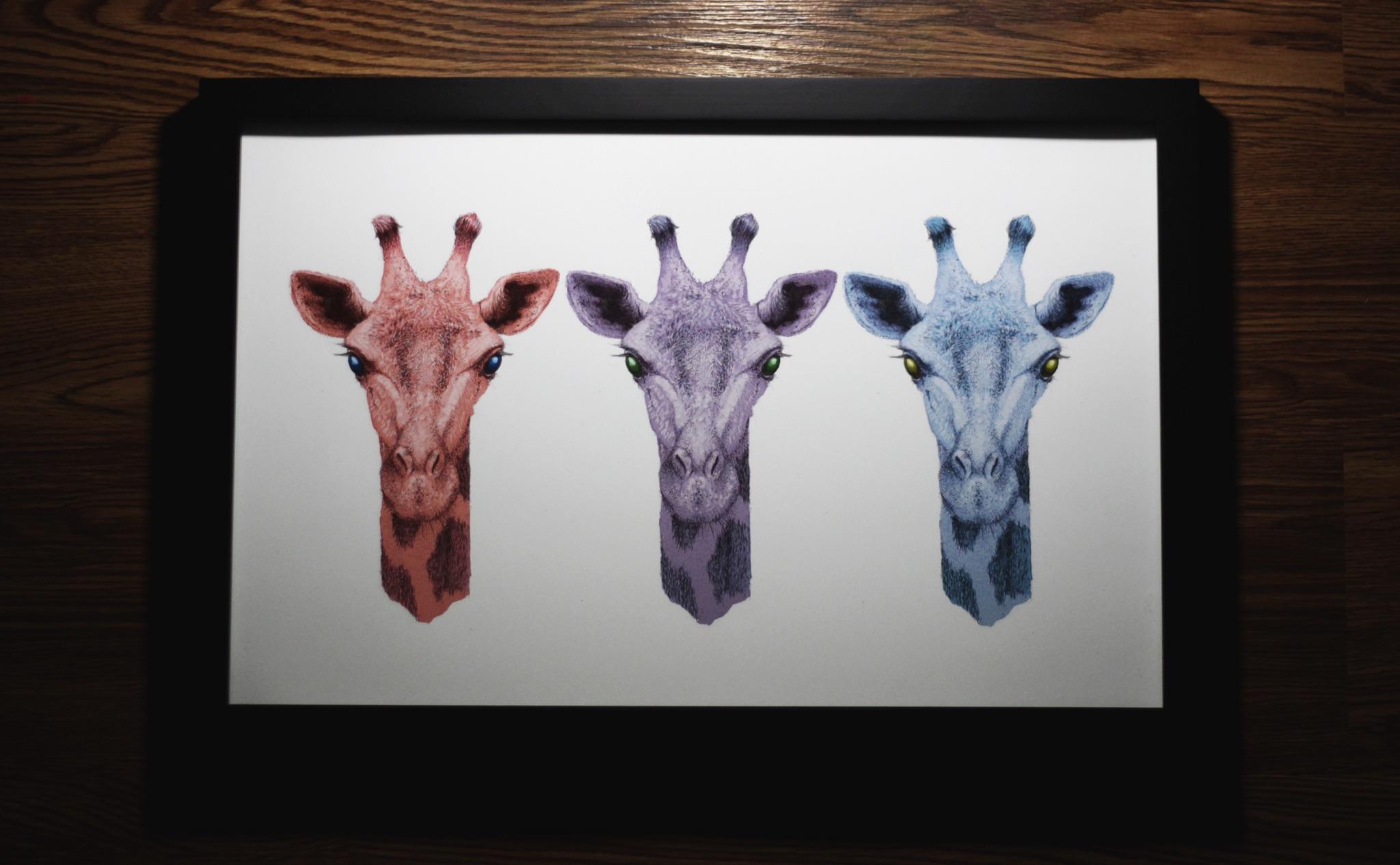 Tri color giraffe print for a show