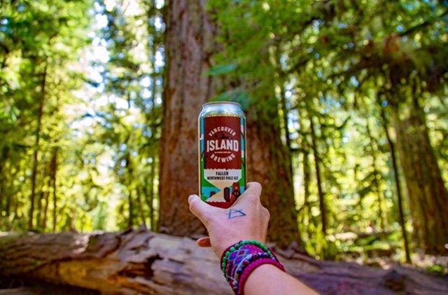 Currently drinking: Faller from @vibrewing • Walking amongst giants puts your place in the world in perspective. 🌲 Cathedral Grove allows for a journey amongst the majestic pillars of the towering ancient Douglas fir trees – some more than 800 years old. It's a busy spot in the summer (justifiably so) but in the tourist off-season can be exceptionally peaceful. Regardless of how many people are there, it's always impressive and well worth at least a quick stop so that you can feel small and breathe in the forest. . . . . . . #fortheloveofcraftbeer #thebeerforthosewholoveithere #partner #sponsored #vancouverisland #hellobc #explorevanisle #vanisleexplorer #drinklocal #supportlocal #brewwithaview #thirstyexplorer #thirstywanderer #beerventure #brewventure #pnwroamers #pnwlove #vancouverislandlife #amazingvancouverisland